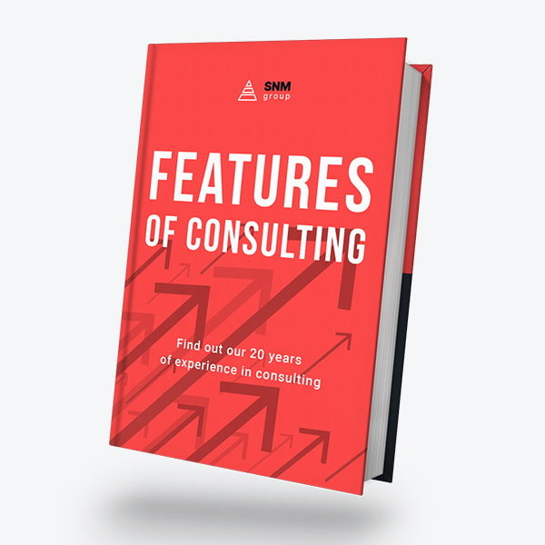 Features of consulting